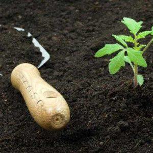 Грунт, составляющие, удобрения