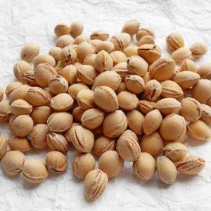 Семена Вишни. Купить Семена Вишни с доставкой по РФ почтой и ТК.
