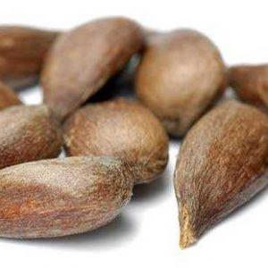Семена Яблони. Купить Семена Яблони с доставкой по почте и ТК.
