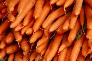 моркоффка