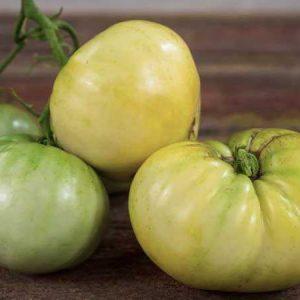 Семена Томата Микадо белый. Купить с доставкой по РФ почтой и ТК.