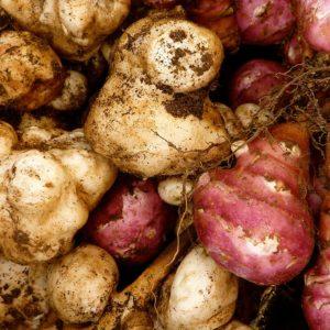 В - Клубневые овощи - посадочный материал