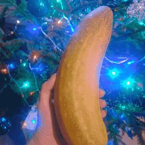 огурец новогодний