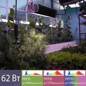 Купить Светодиодный фитосветильник с групповой линзой 62 Вт в СПБ с Доставкой. Отправка по РФ